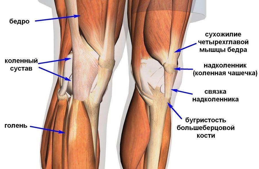 Болит нога от бедра до колена с внешней стороны